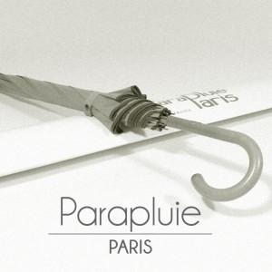 Parapluie de luxe avec ParapluieParis